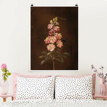 Poster - Barbara Regina Dietzsch - Eine rosa Garten-Levkkoje - Hochformat 3:4