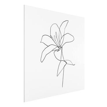 Forex Fine Art Print - Line Art Blüte Schwarz Weiß - Quadrat 1:1