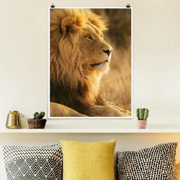 Poster - Löwenkönig - Hochformat 3:4