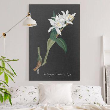 Leinwandbild - Weiße Orchidee auf Leinen II - Hochformat 3:2