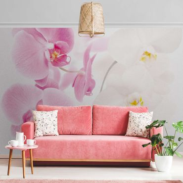 Metallic Tapete  - Delicate Orchids