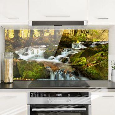 Spritzschutz Glas - Wasserfall herbstlicher Wald - Querformat - 2:1