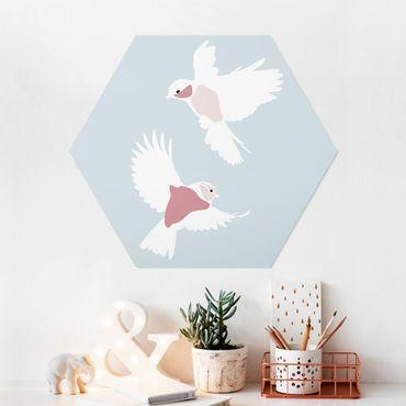 Hexagon Bild Forex - Line Art Tauben Pastell