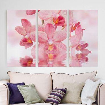 Leinwandbild 3-teilig - Rosa Orchideen auf Wasser - Hoch 1:2