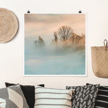 Poster - Nebel bei Sonnenaufgang - Quadrat 1:1