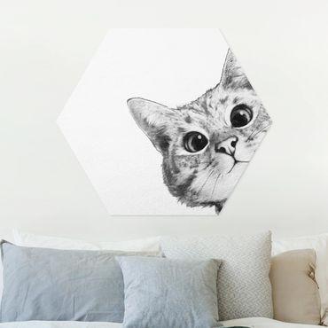 Hexagon Bild Forex - Illustration Katze Zeichnung Schwarz Weiß