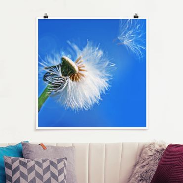 Poster - Blown away - Quadrat 1:1