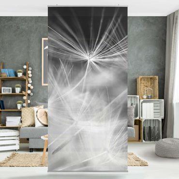 Raumteiler - Bewegte Pusteblumen Nahaufnahme auf schwarzem Hintergrund 250x120cm