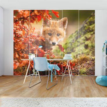 Schiebegardinen Set - Fuchs im Herbst - Flächenvorhänge
