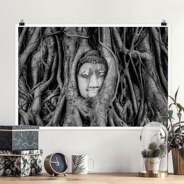 Poster - Buddha in Ayutthaya von Baumwurzeln gesäumt in Schwarzweiß - Querformat 2:3