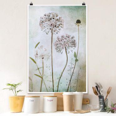 Poster - Lauchblüten in Pastell - Hochformat 3:2