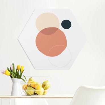 Hexagon Bild Forex - Line Art Kreise Pastell