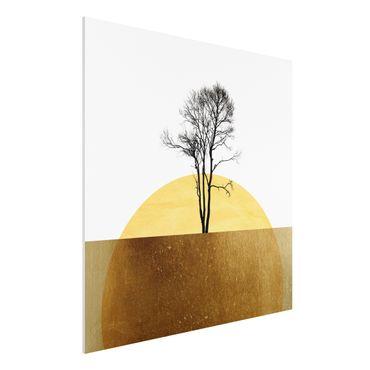 Forex Fine Art Print - Goldene Sonne mit Baum - Quadrat 1:1