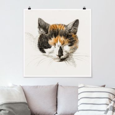 Poster - Vintage Zeichnung Katze IV - Quadrat 1:1