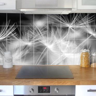 Fliesenbild - Bewegte Pusteblumen Nahaufnahme auf schwarzem Hintergrund