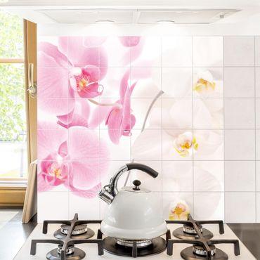 Fliesenbild - Delicate Orchids