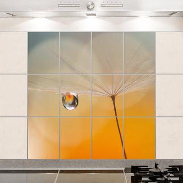 Fliesenbild - Pusteblume in Orange