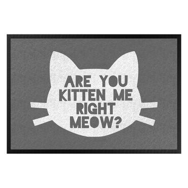 Fußmatte - Are you kitten me