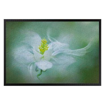 Fußmatte - Weiße Akelei
