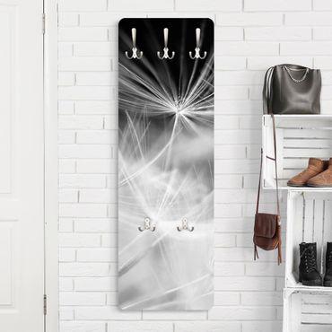 Garderobe - Bewegte Pusteblumen Nahaufnahme auf schwarzem Hintergrund