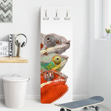 Garderobe - Colorful Chameleon