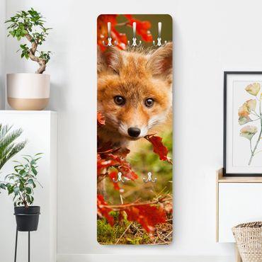 Garderobe - Fuchs im Herbst