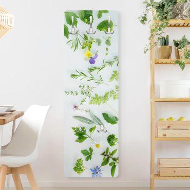 Garderobe - Kräuter und Blüten