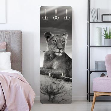 Garderobe - Resting Lion