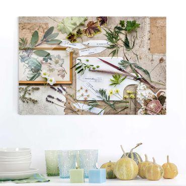 Glasbild - Blumen und Gartenkräuter Vintage - Quer 3:2