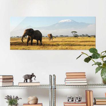 Glasbild - Elefanten vor dem Kilimanjaro in Kenya - Panorama Quer