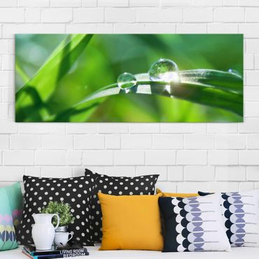 Glasbild - Green Ambiance II - Panorama Quer