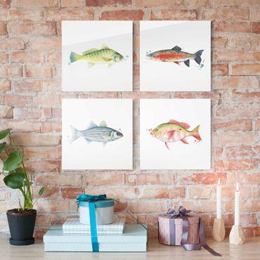 Glasbild mehrteilig - Farbfang - Fische Set I - 4-teilig