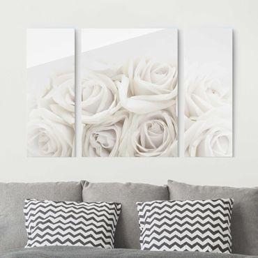 Glasbild mehrteilig - Weiße Rosen 3-teilig