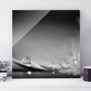 Glasbild - Story of a Waterdrop Black White - Quadrat 1:1