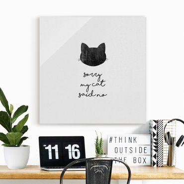 Glasbild - Haustier Zitat Sorry My Cat Said No - Quadrat