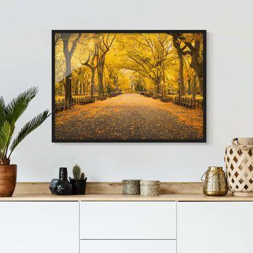 Bild mit Rahmen - Herbst im Central Park - Querformat