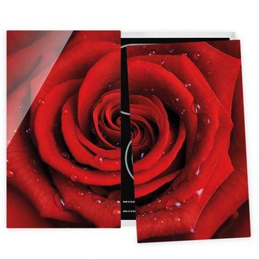 Herdabdeckplatte Glas - Rote Rose mit Wassertropfen