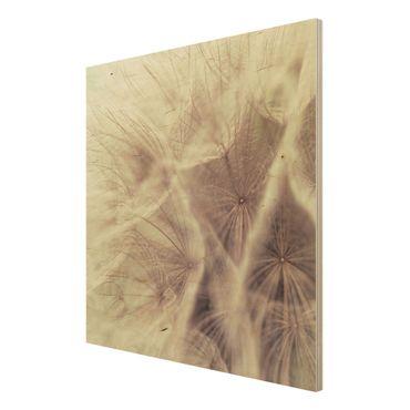 Holzbild Pusteblume - Detailreiche Pusteblumen Makroaufnahme mit Vintage Blur Effekt - Quadrat 1:1