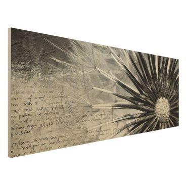 Holzbild Pusteblume Schwarz & Weiß - Panorama Quer