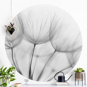 Runde Tapete selbstklebend - In einer Pusteblume Schwarz-Weiß