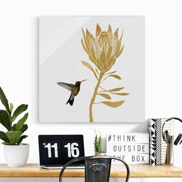 Glasbild - Kolibri und tropische goldene Blüte - Quadrat