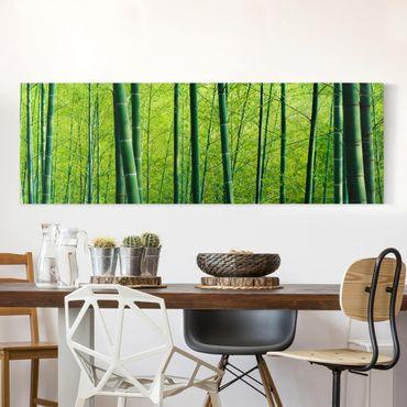 Leinwandbild - Bambuswald No.2 - Panorama Quer