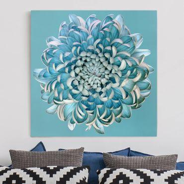 Leinwandbild - Blaue Chrysantheme - Quadrat 1:1