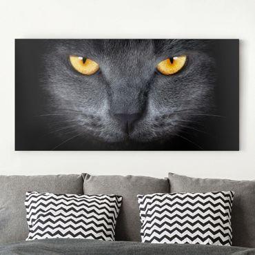 Leinwandbild - Cats Gaze - Quer 2:1