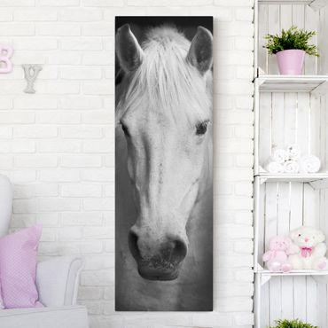 Leinwandbild Pferd Schwarz-Weiß - Dream of a Horse - Panoramabild Hoch