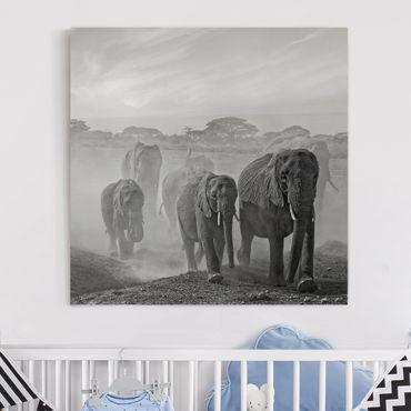Leinwandbild - Elefantenherde - Quadrat 1:1