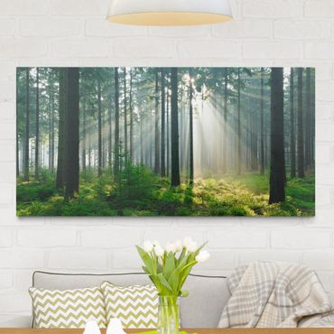 Leinwandbild - Enlightened Forest - Quer 2:1