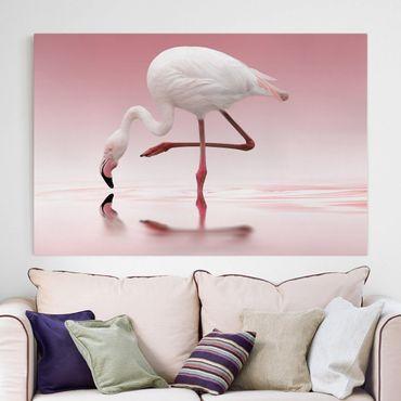 Leinwandbild - Flamingo Dance - Quer 3:2