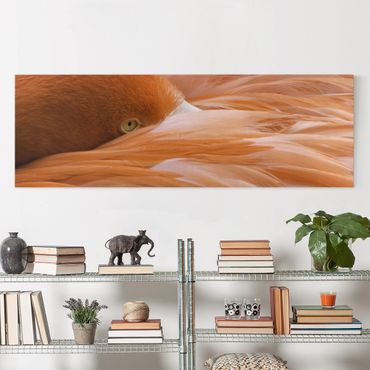 Leinwandbild - Flamingofedern - Panorama Quer