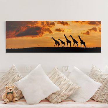 Leinwandbild - Fünf Giraffen - Panorama Quer